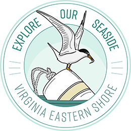 Explore Our Seaside Logo